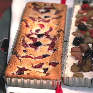 Rhubarb and Blackberry Snack Cake recipe